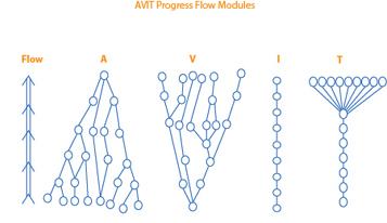 AVIT Progress Flow